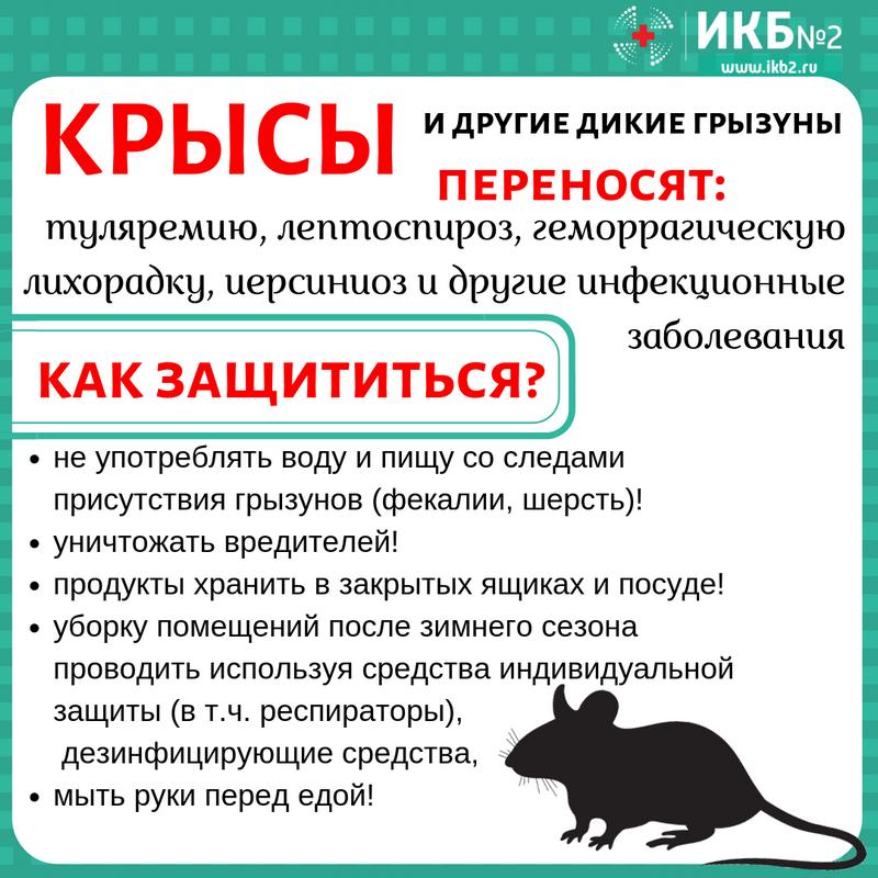 В Петровском районе и регионе примут меры для профилактики ГЛПС